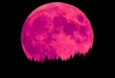 Strawberry Moon on June 24